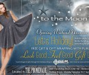to the moon opening weekend special